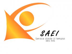 logo_SAEdesiles
